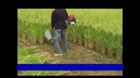 绩效高多功能收割机 水稻收割机 割草机