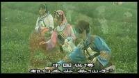 视频: 十大名茶:都匀毛尖介绍QQ2511709254