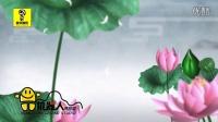 张津涤+云菲菲-泛水荷塘 冒字音乐 红日蓝月KTV推介