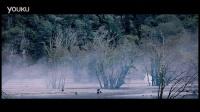张选华导演iflow艾芙洛洗发水森林公主橙花营养 植物原浆压榨的无硅油天然香氛洗发水 健康洗护套装 全国钻石总代微信:85328656