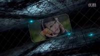 3d网络(会声会影x8)
