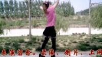 赵泮玲舞蹈《闹花灯》