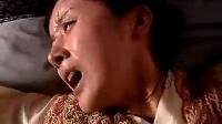 电视剧片段——孙菲菲版花月奴生双胞胎
