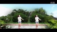广场舞小苹果广场舞蹈视频大全 广场舞动作分解《回娘家》