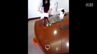 乐淘水 LTS-81B 直饮台式家用净水器手机版 视频