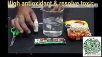排毒实验—华芝国际生命之源