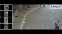 视频浓缩摘要在大型购物中心的应用-摘要视频