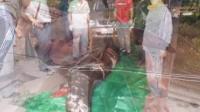 青岛一男子远洋捕获六米食人鲨 用吊车运进家 150522