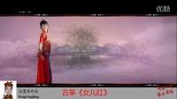 [民乐精粹]古筝《女儿红》(Flash动画版)
