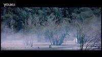 视频: 全国钻石总代微信:hgs364212194 艾芙洛洗发水森林公主橙花