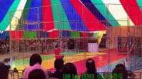 老虎狮子演出国际马戏团19