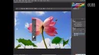 [PS]Adobe Photoshop CC工具箱讲解11(放大工具、拍手工具)ps基础教程