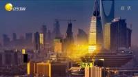 沙特王位继承战  150601