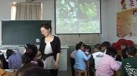 小学三年级科学上册《水生植物》教学视频