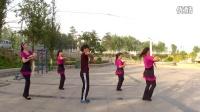 视频: 筵宾合佳乐广场舞服装展示。【飞翔在青藏高原上】。