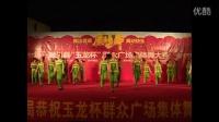 陇川广场舞:激情春蕾