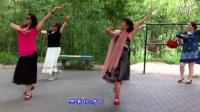 紫竹院广场舞——梦见你的那一夜(带歌词字幕)