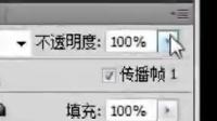 2015年6月13日晚7点墨香老师PS《溶图技巧》(下)录像:白雪