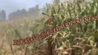 玉米秸秆收割机厂家玉米秸秆割晒机生产厂地址