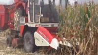 征途剥皮机作业视频,加装改装玉米收割机