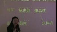 初中生物教学视频《科学探究实验讲座》张怡