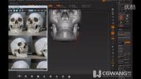 ZBrush模型课程-头骨雕刻10