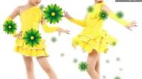 拉丁舞服装 女童 儿童舞蹈服演出服装 恰恰跳舞裙爵士练功服
