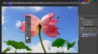 [PS]ps放大工具、拍手工具Photoshop基础教程ps入门零基础教程ps操作讲解