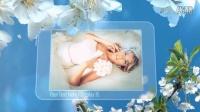 AE模板3021-浪漫樱花背景婚礼照片展示AE模板