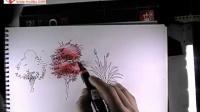 0078.网-景观植物手绘视频