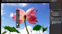 [PS]Photoshop CC工具箱讲解11(放大工具、拍手工具)ps教程ps基础教程ps淘宝美工教程