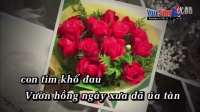 越南版 999朵玫瑰 999  óa H ng-Quách Tu n Du郭俊杜