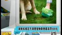 宠物便便冷冻喷雾剂