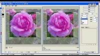 [PS]photoshop教程-切片选项-第12节
