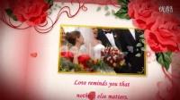 唯美甜蜜结婚相册花瓣飘落AE模版3TB000377
