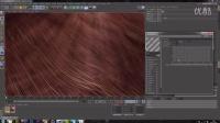 【CG织梦网】分享 C4D视频教程:在C4D中创建逼真的动物皮毛 - Creating Realistic Animal Fur in Cinema 4D