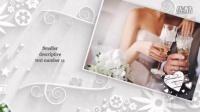 1117_唯美传统婚礼相册动画AE模板