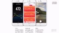 iphone苹果6使用说明书与苹果6plus