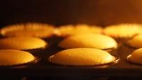 cupcake海绵蛋糕胚的做法【天天烘焙fendy】