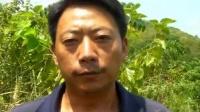陕西安康汉滨区领导谁在充当巨贪村支书张吉云的保护伞