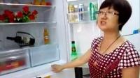 林长青  南部凌康电器  蕾姐海尔456冰箱讲解
