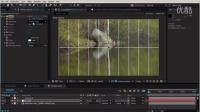 AE天鹅戏水特效制作训练视频教程
