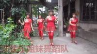 广场舞《五星红旗飘起来》-王家池快乐姐妹舞蹈队