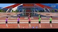 2014最新广场舞大全 广场舞爱拼才会赢__标清