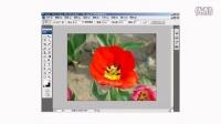 [PS]photoshop 不规则选择工具组