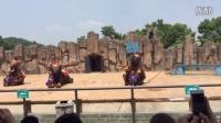 20150823长沙大象表演2