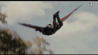 《蚁人》片段 蚁人大战猎鹰