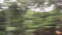 D11次飞驰在秦沈客运专线