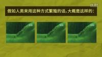 【暴走小课堂17】10种极品动物性生活 一部自然界的限制级大片