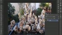 [PS]ps教程photoshop学习教程PS抠图ps基础教程PS磨皮教程PS入门教程PS套索工具